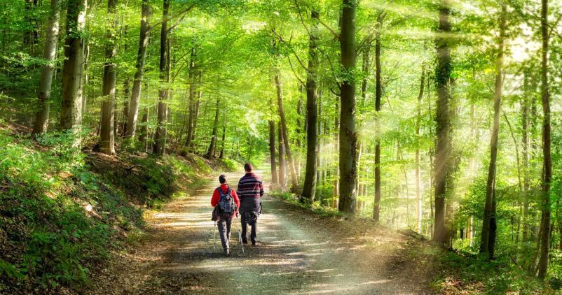 couple en promenade en forêt